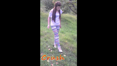 35144 - Apples Crushed By Laura