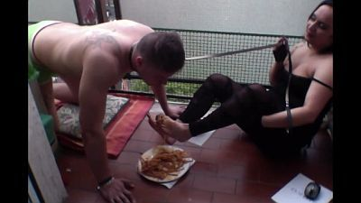 52181 - How To Feed A Dog