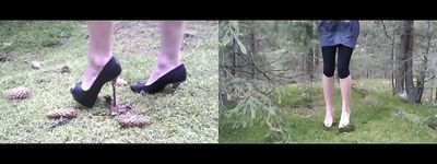 61164 - Pine Cones Trampling & Grass Jumping