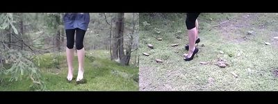 61165 - Pine Cones Trampling & Grass Jumping (MOBILE VERSION)