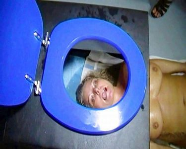50850 - Extreme and Perverted toilet seat excesses!