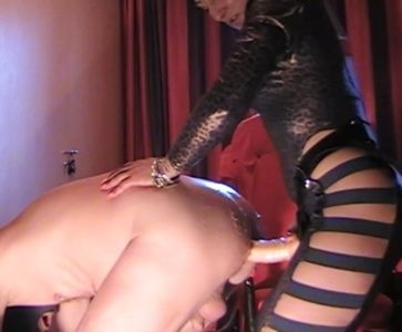 89402 - Mistress Anita more kinky humiliation and strapon fucking