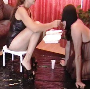 76194 - Shit eating from a box after humiliation