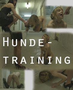 77526 - Dog training
