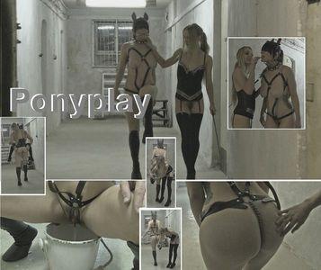 85051 - Ponyplay