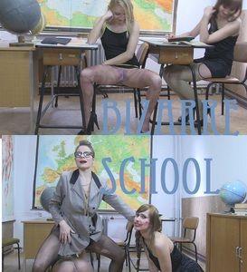 85758 - Bizarre school