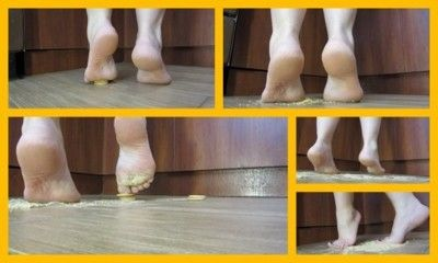 122372 - cookies underfoot