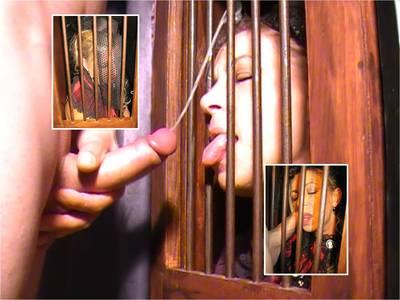 8256 - The Confessional Secret