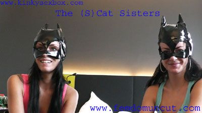 25378 - Cats Interview