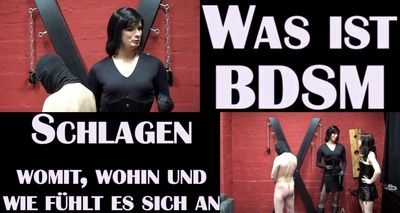 19312 - BDSM-guidebook: Whipping