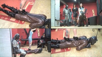 42435 - Trampling on the latex horse