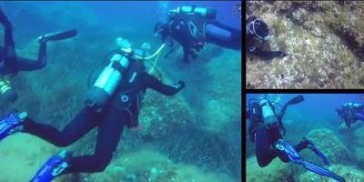 68232 - Scuba fetish: Hera's 600th dive