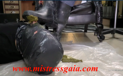 26722 - MISTRESS GAIA - RIDING SCAT