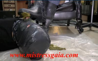 26723 - MISTRESS GAIA - RIDING SCAT