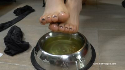 32380 - MISTRESS GAIA FEEDS HER DOG