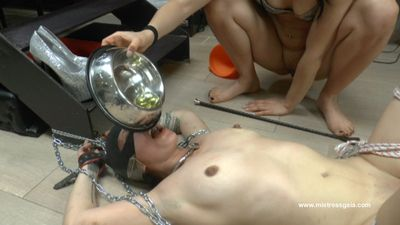 34741 - MISTRESS GAIA - EATING SHIT WITH FINAL DRINK