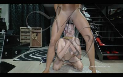 38737 - MISTRESS GAIA - SMOTHER OF PEE & SHIT