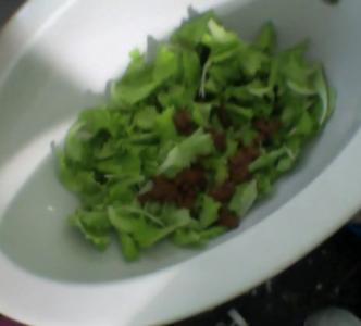 45927 - Shit Salad