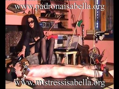 43062 - Torture: nipples and dick