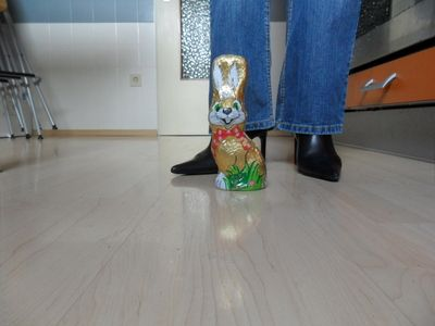 62618 - Easter bunny is killed