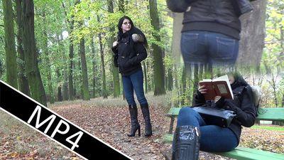 87913 - Autumn Walk 2
