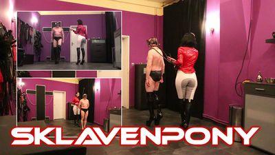 87942 - The Slavepony
