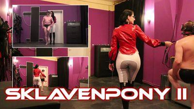 87950 - The Slavepony II