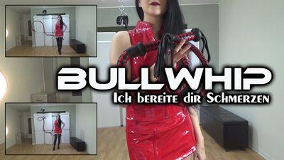 88643 - Bullwhip