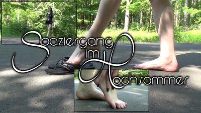 90461 - Walk In Midsummer