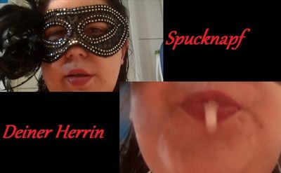 72435 - Spittoon your mistress