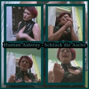 115255 - Human Asthray - You can not do more