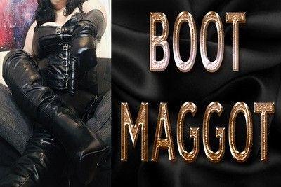 160537 - BOOT MAGGOT