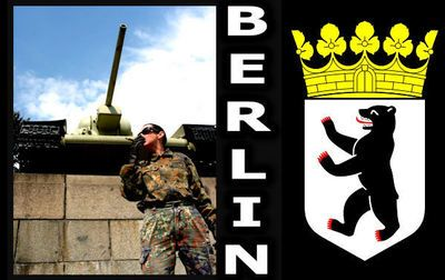 16362 - German Military Uniform Art