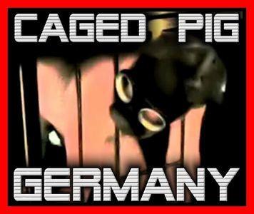 16416 - Caged Slave
